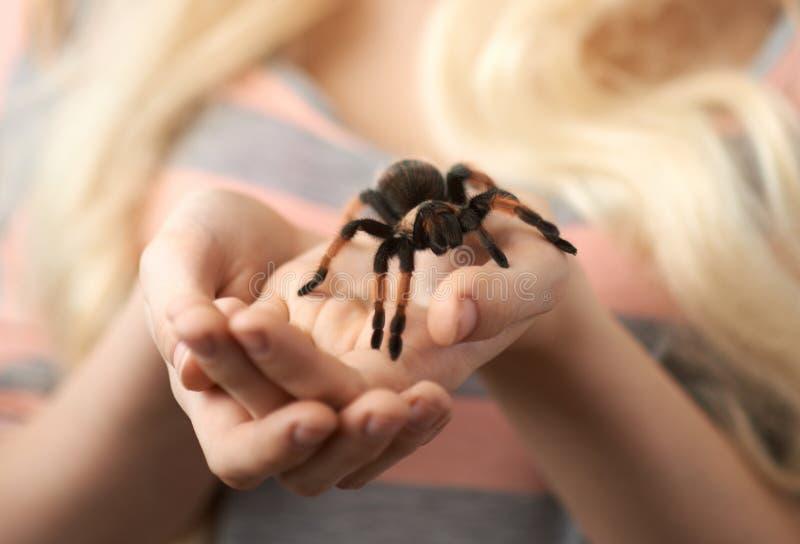拿着在手上的女孩一只大蜘蛛 免版税图库摄影