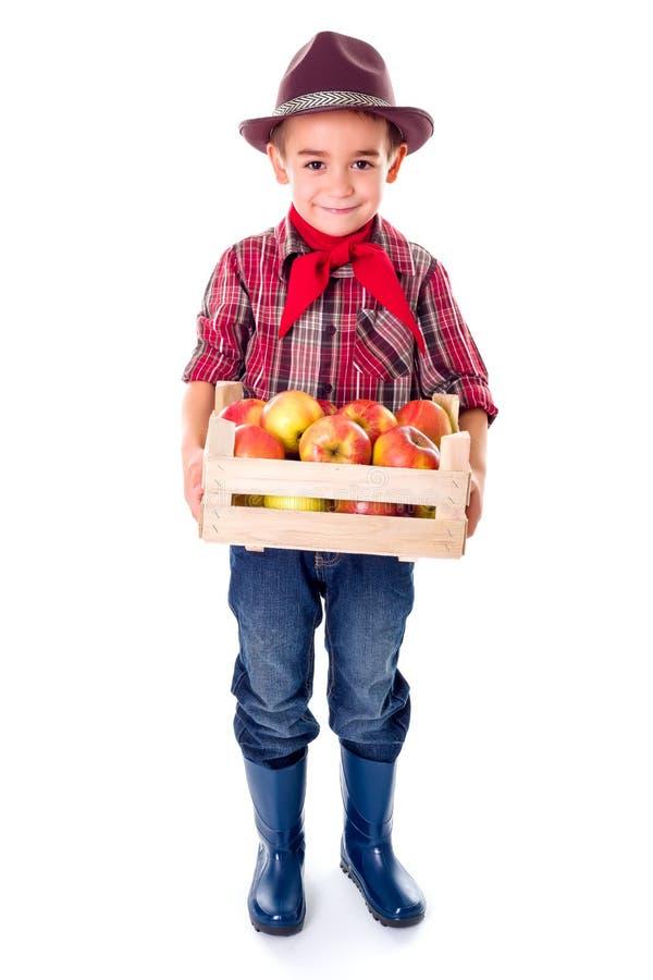 拿着在条板箱的小农业学家男孩苹果 免版税库存图片
