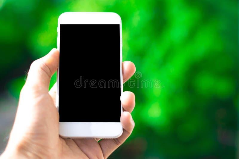 拿着在树bokeh背景使用墙纸或背景的男性手一个智能手机通信工作的 免版税库存图片