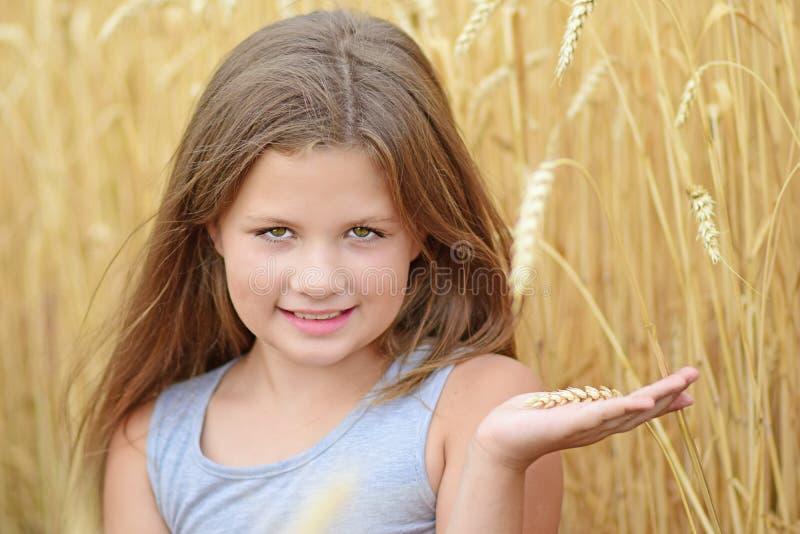 拿着在棕榈的一个美丽的小女孩黑麦钉 金黄黑麦领域夏日 纯净,成长,幸福的概念 库存照片