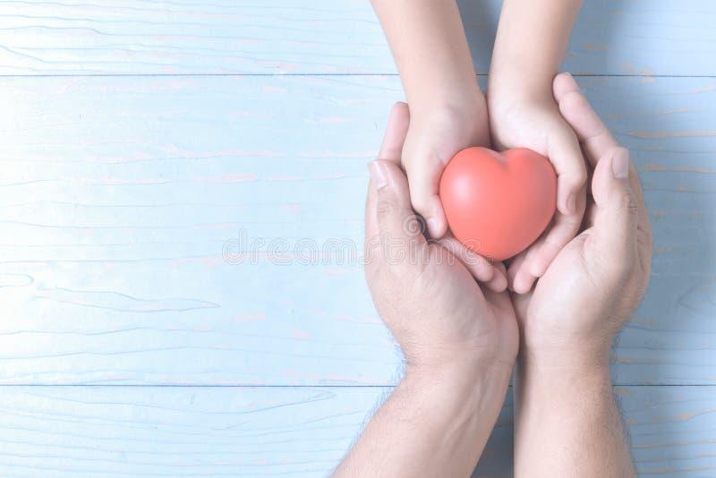 拿着在葡萄酒的成人和儿童手红色心脏 图库摄影