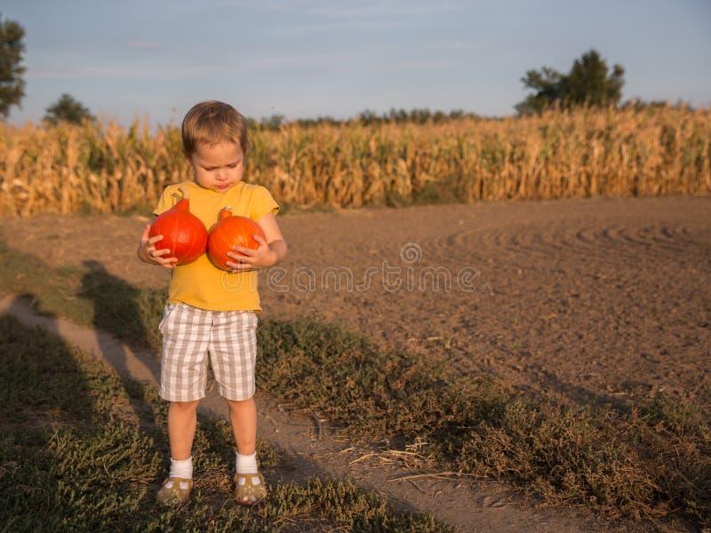 拿着在领域的可爱的小女孩两个小南瓜 库存照片