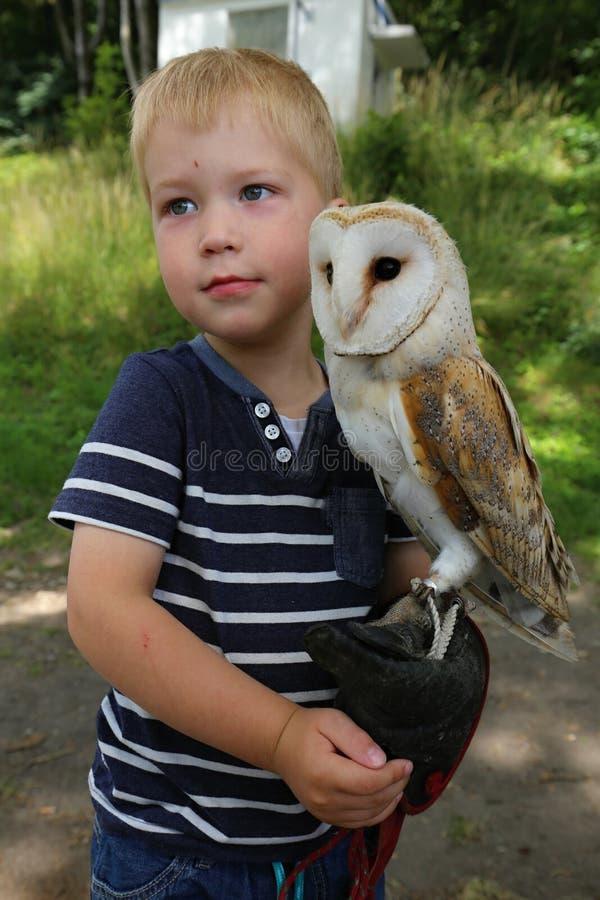 拿着在他的手上的男孩大白色猫头鹰 库存照片