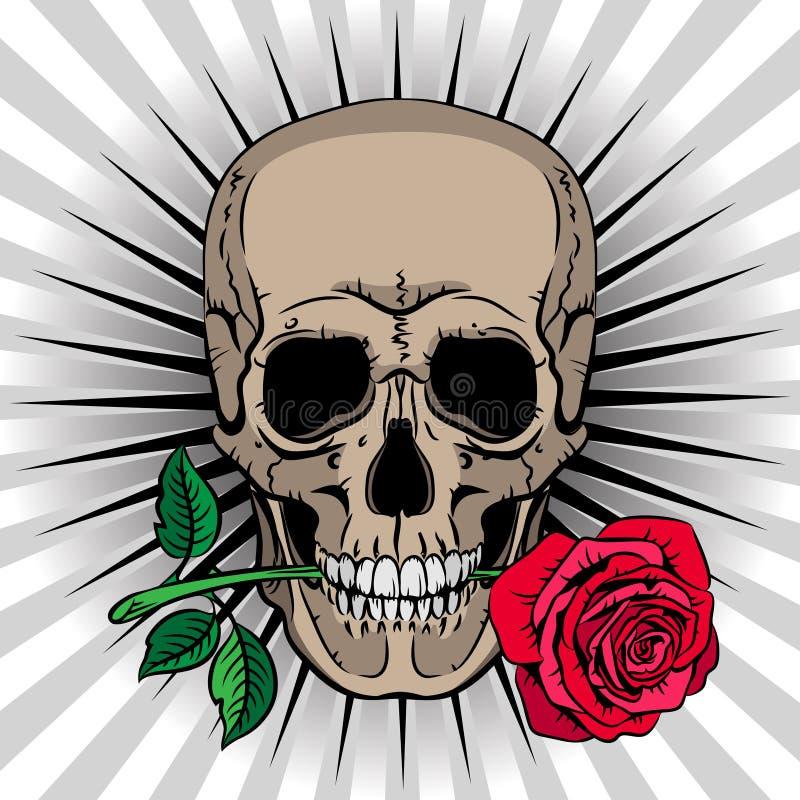 拿着在他的嘴的头骨一朵玫瑰 向量例证