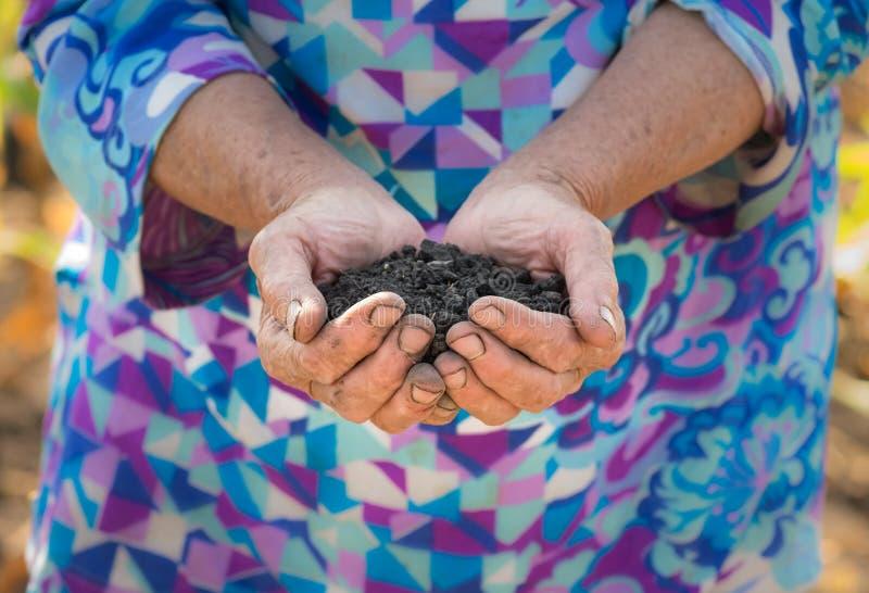 拿着堆可耕的土壤的老农夫在手上 库存图片