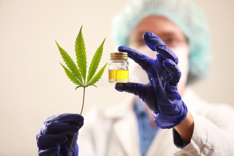 拿着大麻的妇女医生生叶并且上油 替代竹浴biloba银杏树项目医学温泉盘 图库摄影