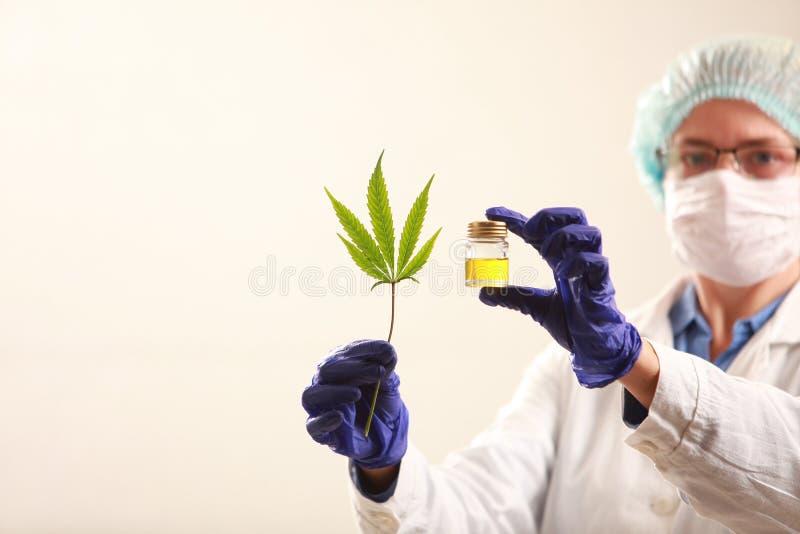 拿着大麻的妇女医生生叶并且上油 替代竹浴biloba银杏树项目医学温泉盘 免版税库存照片