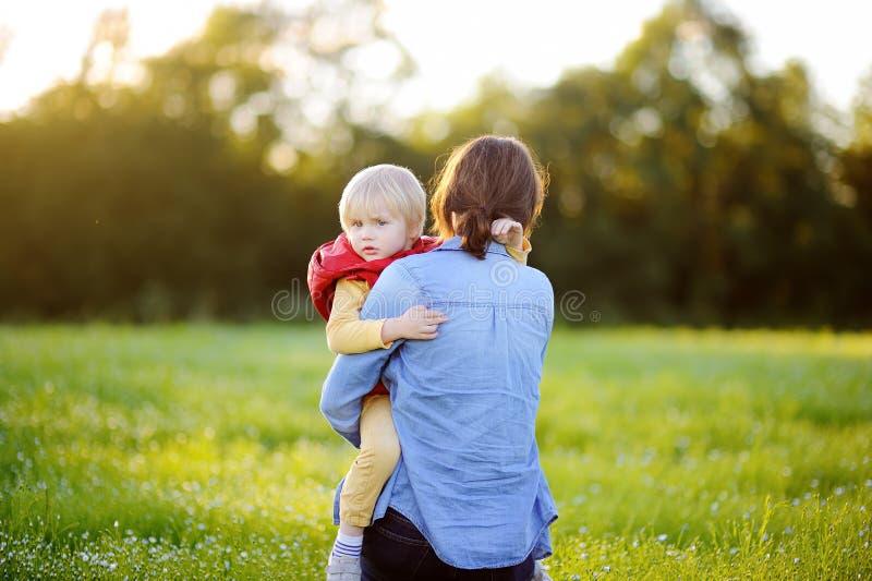 拿着她的小儿子的年轻母亲在花田的步行期间 库存图片