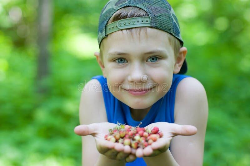 拿着小的草莓的男孩 免版税库存照片