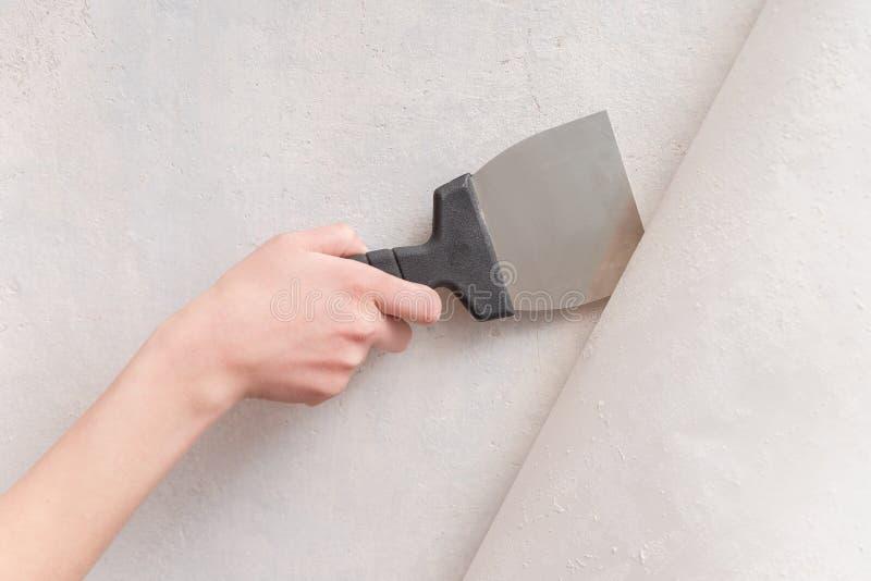 拿着小铲的女性手 处理维修服务沙纸墙壁的公寓 免版税库存图片