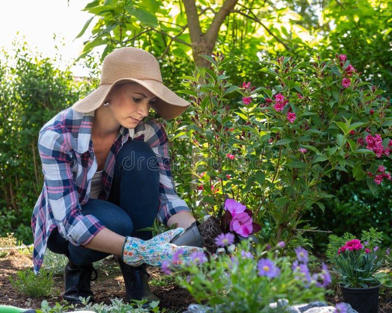 拿着开花植物的美丽的女性花匠准备好在她的庭院里被种植 从事园艺 库存图片