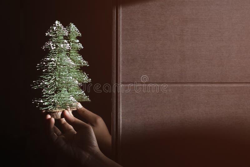 拿着微型松树,与拷贝空间的选择聚焦的手 免版税库存照片