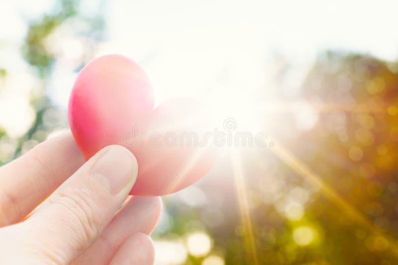 拿着心形的李子的人反对太阳 爱概念与太阳火光的生活方式图象 华伦泰` s日背景 免版税库存照片