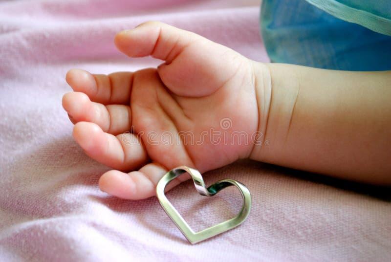 拿着心脏的婴孩的手 库存照片