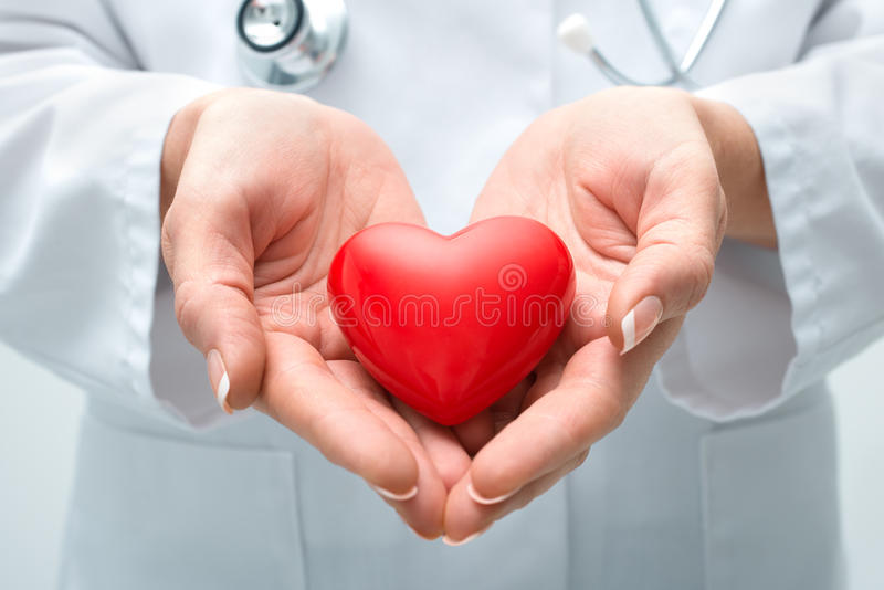 拿着心脏的医生 免版税库存照片