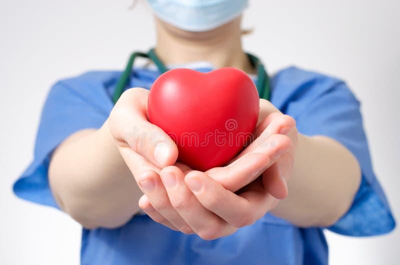 拿着心脏的医生 库存照片