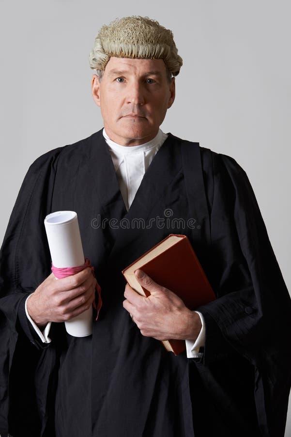 拿着摘要和书的男性律师画象 库存图片