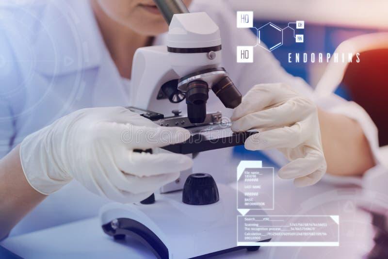 拿着显微镜幻灯片和看它的仔细的科学家 免版税库存图片