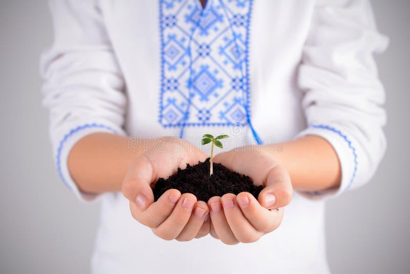 拿着有土壤的孩子年幼植物在手上当世界地球日构想 免版税库存照片