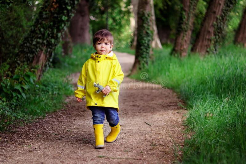 拿着有害怕的面孔的黄色雨衣和胶靴的单独走逗人喜爱的小男孩犀牛玩具在深绿森林里丢失了 免版税图库摄影