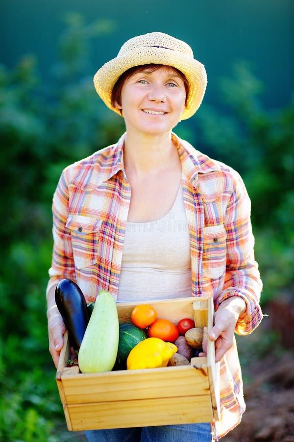 拿着有新鲜蔬菜的女性花匠木板箱 免版税库存照片