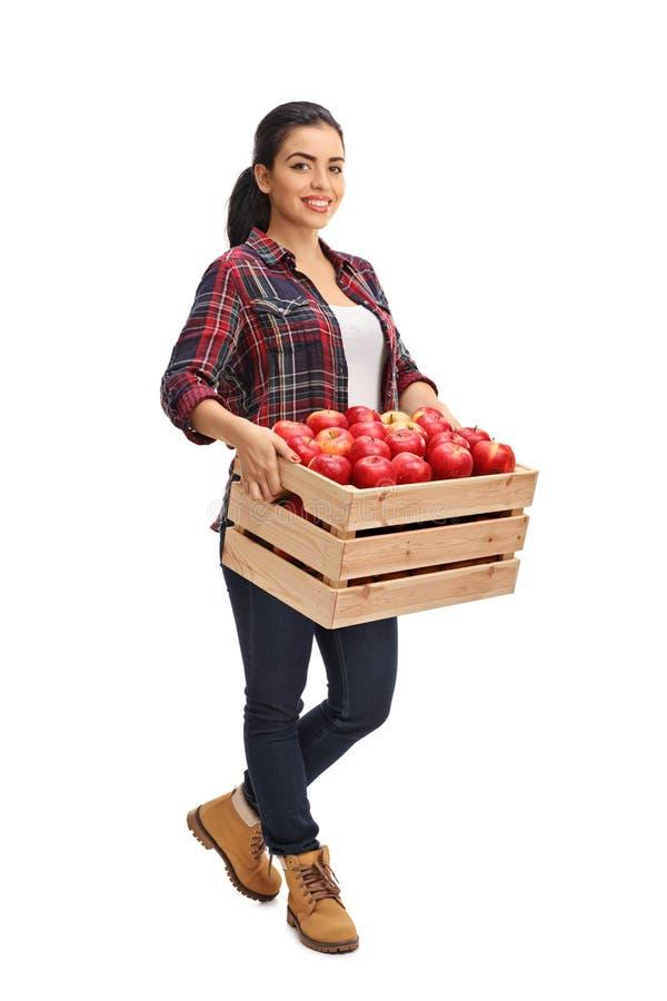 拿着条板箱的女性农业工作者有很多苹果 库存照片