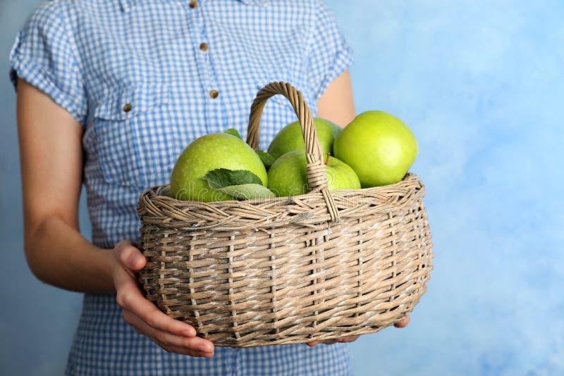 拿着柳条筐用成熟水多的绿色苹果的妇女 库存图片