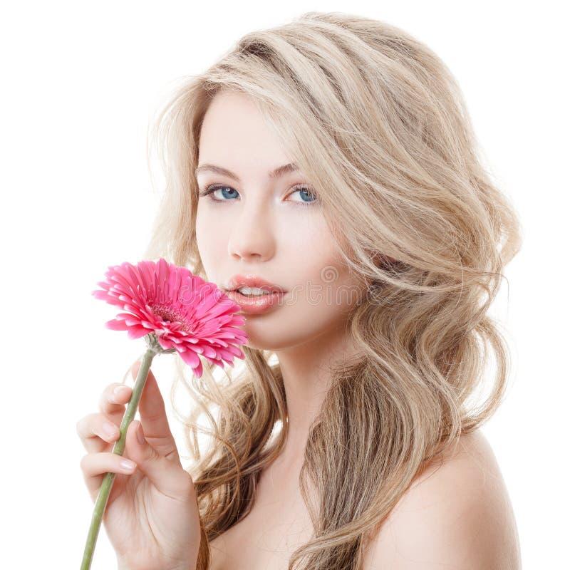 拿着桃红色菊花的美丽的妇女 免版税库存照片
