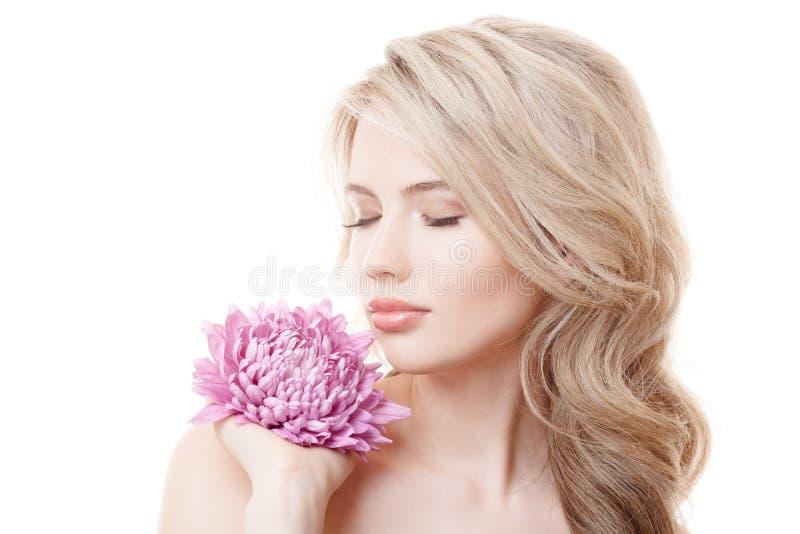 拿着桃红色菊花的美丽的妇女 免版税图库摄影
