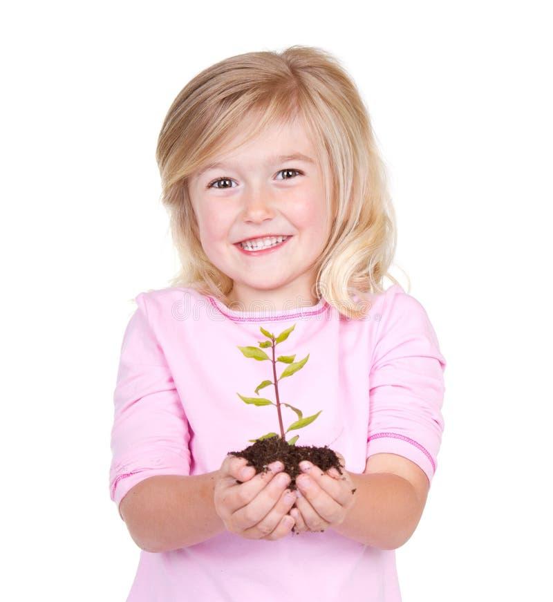拿着植物的孩子 库存照片