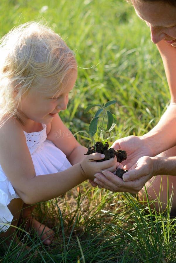 拿着植物的小女孩和母亲 免版税库存图片