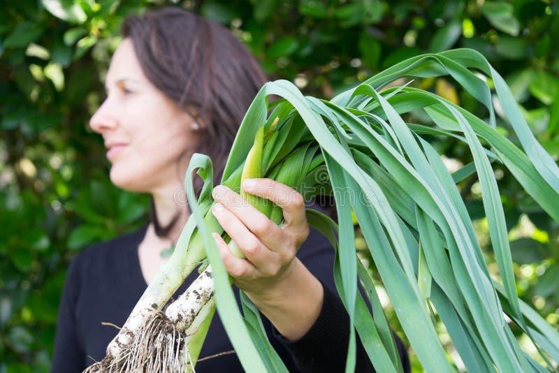 拿着泥泞的有机韭葱的收获女性花匠,看 免版税库存图片