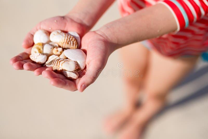 拿着海壳的女孩 免版税库存照片