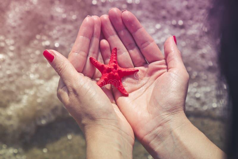 拿着海星的女性手 夏令时概念 免版税库存照片