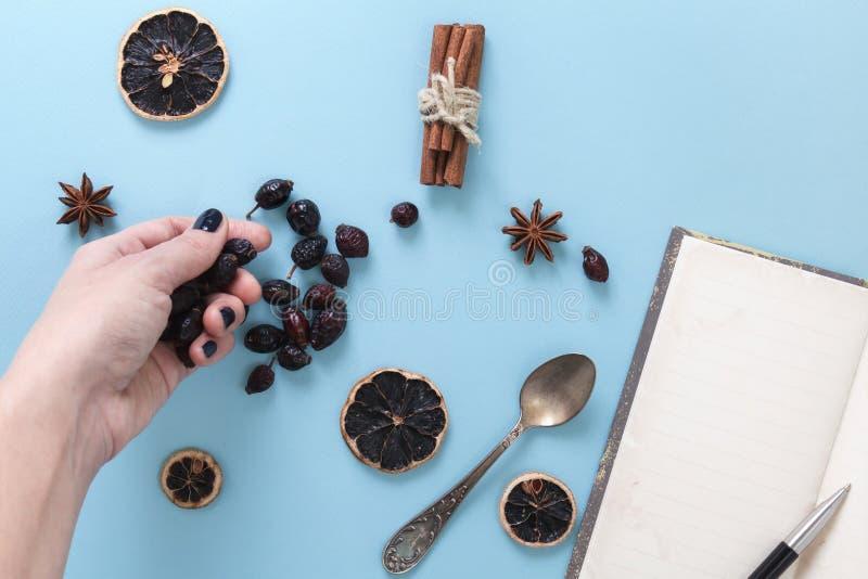 拿着狂放的玫瑰色种子的堆与被打开的空白的笔记本和笔的手,在与相关对象的蓝色背景 库存照片