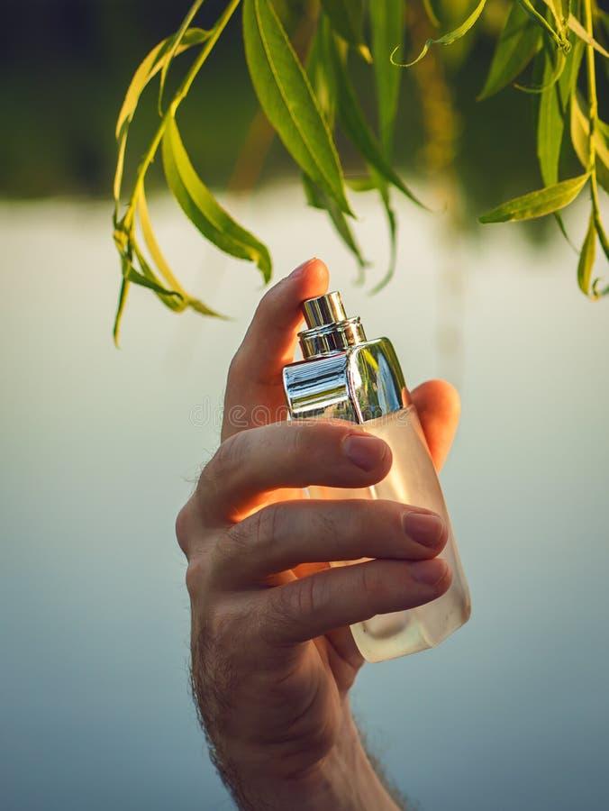 拿着瓶香水的男性手 免版税库存照片