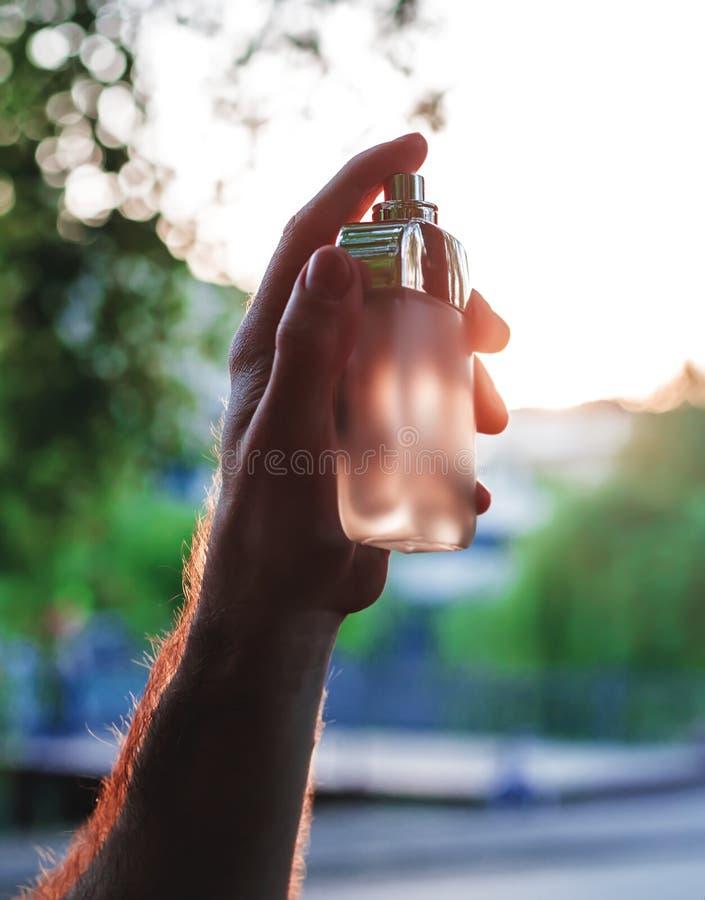 拿着瓶香水的男性手 库存图片