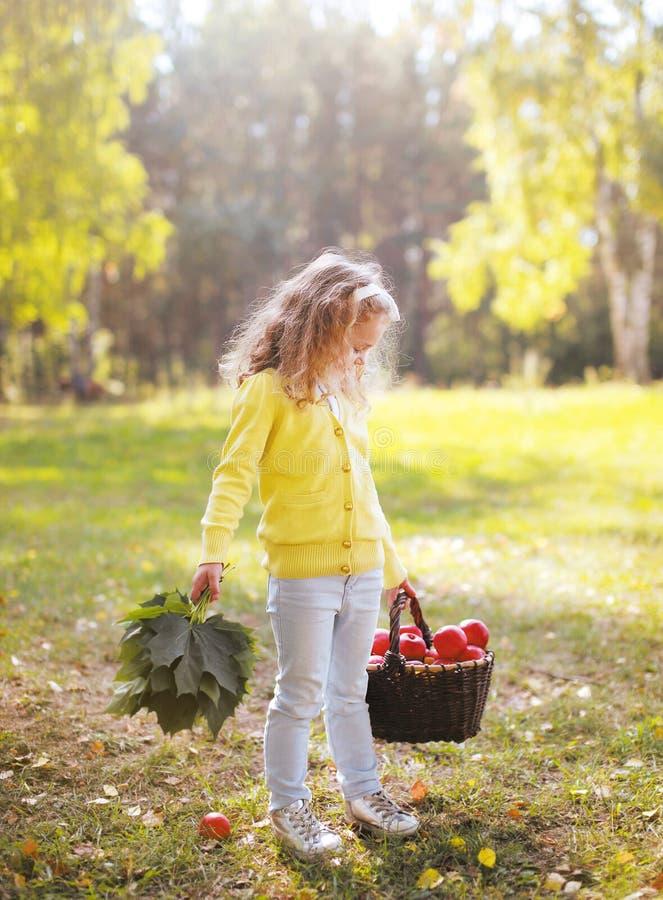拿着篮子用苹果的孩子走在秋天 免版税库存图片