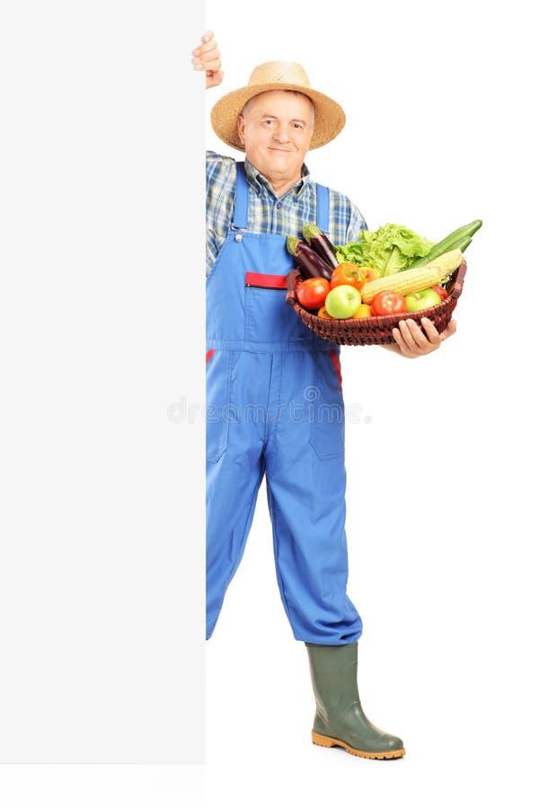 拿着篮子篮子的成熟花匠有很多食物 免版税库存照片