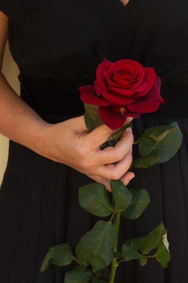 拿着红色玫瑰的妇女 图库摄影