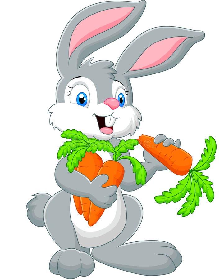拿着红萝卜的动画片兔子 库存例证