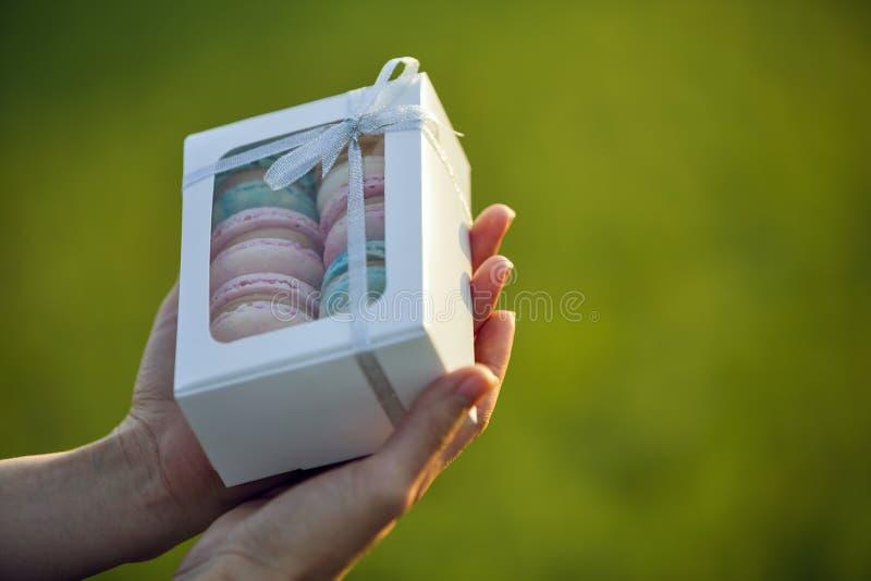 拿着纸板礼物盒用五颜六色的在绿色被弄脏的拷贝空间背景的桃红色蓝色手工制造macaron曲奇饼的女性手 库存照片