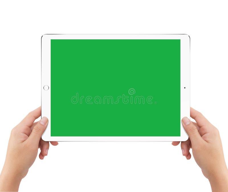 拿着绿色屏幕白色片剂计算机的被隔绝的人的两只手 库存例证