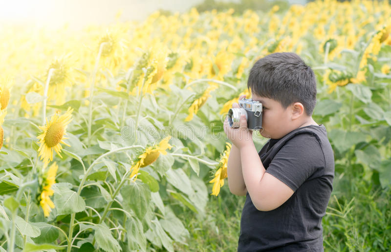 拿着老照相机的孩子采取照片向日葵花 图库摄影