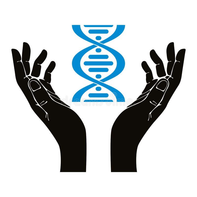 拿着脱氧核糖核酸子线的手 向量例证