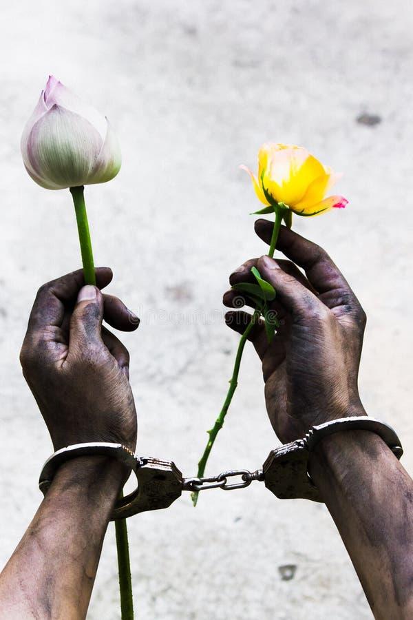 拿着花的囚犯手 库存图片