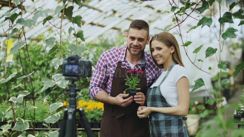 拿着花的围裙的谈话年轻微笑的博客作者夫妇的花匠和网上vlog的记录的录影博克 免版税库存照片