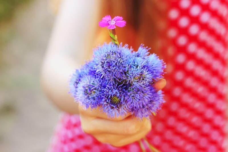 拿着花的孩子手在绿色草甸 库存图片