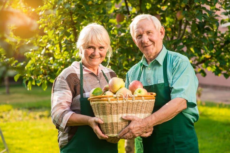 拿着苹果篮子的年长夫妇 免版税库存图片