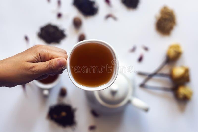 拿着茶杯的手 拿着一杯茶与茶罐、干玫瑰色花和其他茶成份的妇女在背景 免版税库存照片